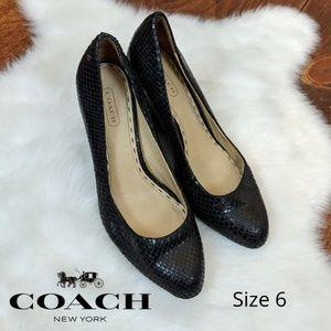 Coach • Black Wedge [Shoes]